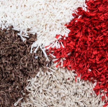ניקוי שטיחי שאגי